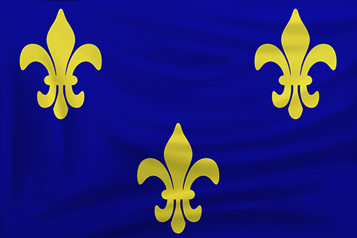 Flag of French in Age of Empires III: Definitive Edition