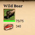boar_stats