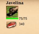 javelina_stats